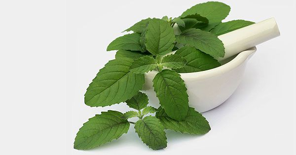 6-Unexpected-Side-Effects-Of-Tulsi