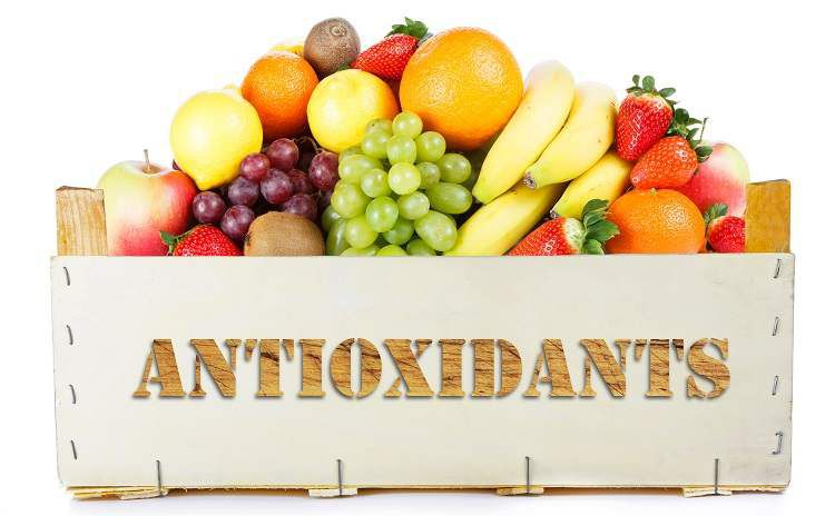 antioxidants food in hindi