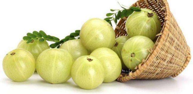 - avla ke tel ke fayde in hindi gooseberry oil benefits e1533625772264 - 7 दिन में करें सफ़ेद बालों को काला, साथ ही पाएं घने, रेशमी और चमकदार बाल