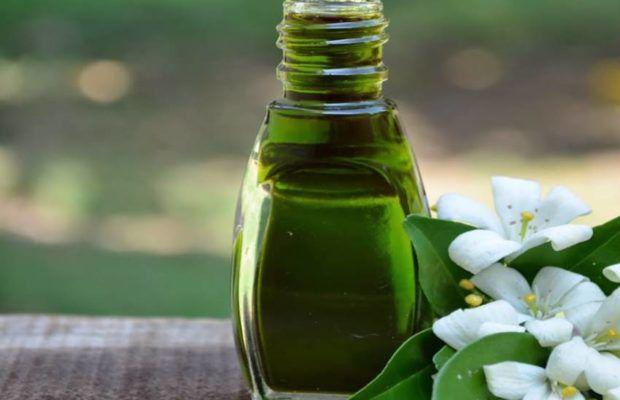 bhringraj tel ke fayde bhringraj oil benefits