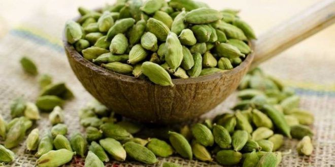 elaichi ke fayde cardamom benefits in hindi