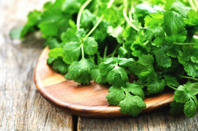 hari dhaniya ke fayde green coriander benefits