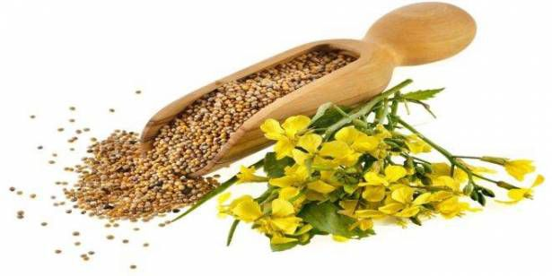 mustard-seed-oil