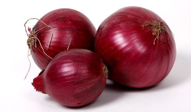 onion-07