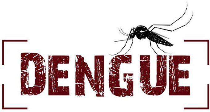 - dengue1  - डेंगू में लाभकारी  है इस फल के पत्तों का रस,दिलाएगा २ दिनों  में डेंगू  से छुटकारा