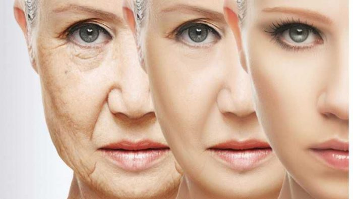 anti -aging