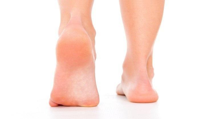 - heels - ह्रदय रोगों से ग्रस्त लोगों के लिए अमृत है ये फल, कैंसर, डायबिटीज जैसे सैंकड़ों रोगों में है लाभदायक