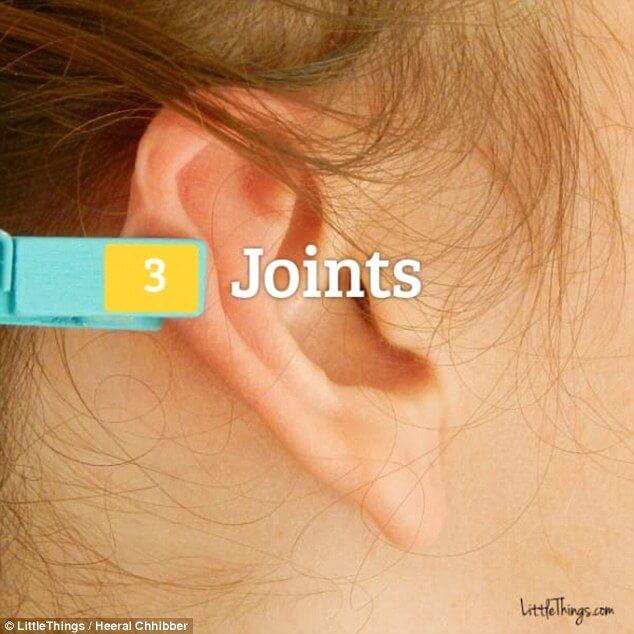 - 65 577b66da70a1b - कानों में कपड़ों की पिन टांगने से दूर होंगे बड़े से बड़े रोग, रिसर्च में हुआ है साबित