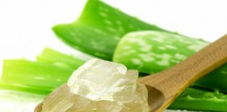 एलोवेरा aloevera ke fayde aur labh in hindi