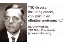 - otto - बड़ी से बड़ी बीमारी का इलाज एल्कलाइन डाइट – इसके मुख्य स्त्रोत और फायदे