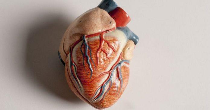 हार्ट अटैक heart attack ke lakshan karan aur ilaj in hindi