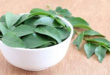 kadi patta ke fayde curry leaves benefits in hindi