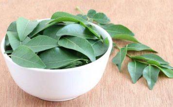 kadi patta ke fayde curry leaves benefits in hindi